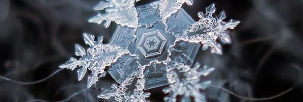 bilder på snöflingor